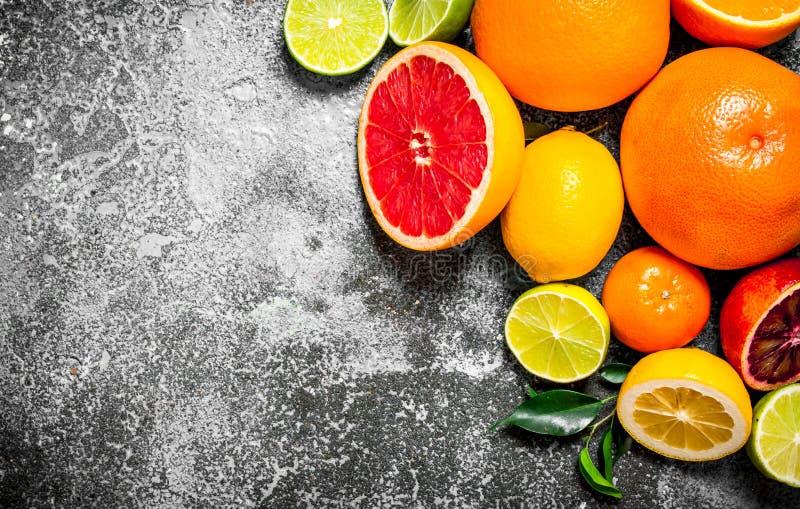 citrusfrukt skivade arkivbild