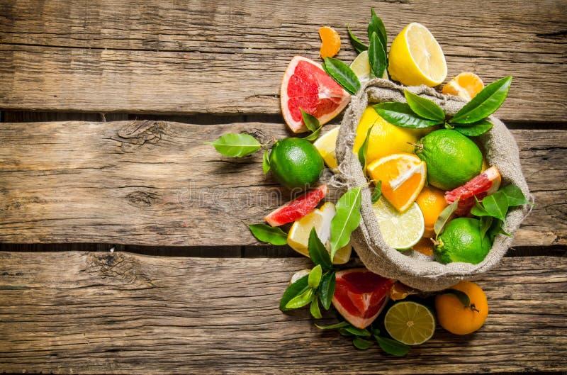 Citrusfrukter - grapefrukt, apelsin, tangerin, citron, limefrukt i den gamla påsen arkivbild