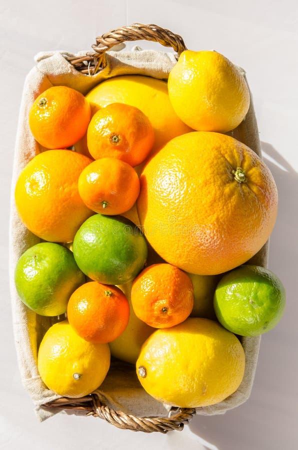 Citrusfrukter i korg arkivbild