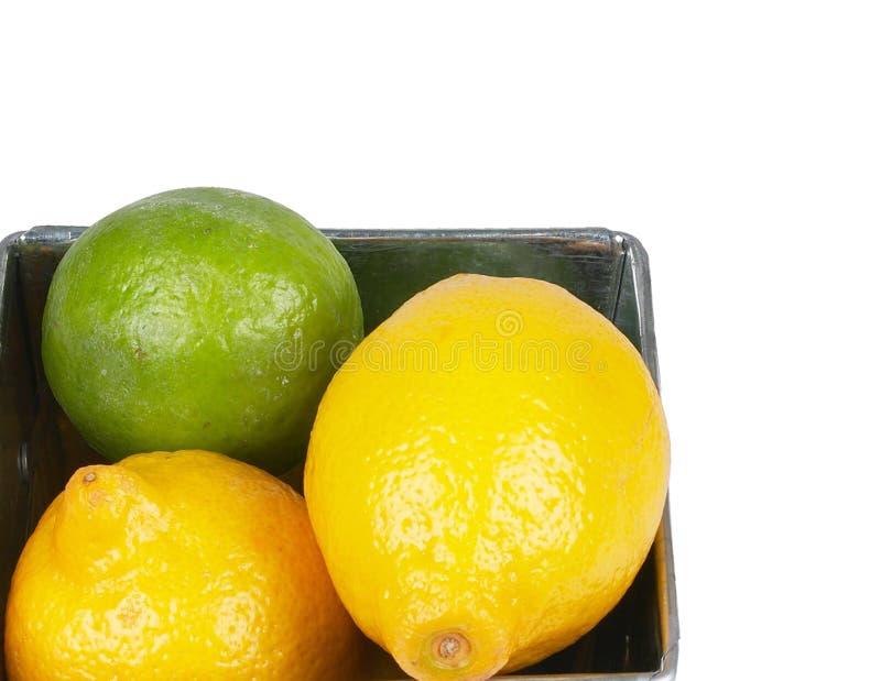 Citrusfrukter i korg Apelsiner, limefrukter och citroner arkivbilder