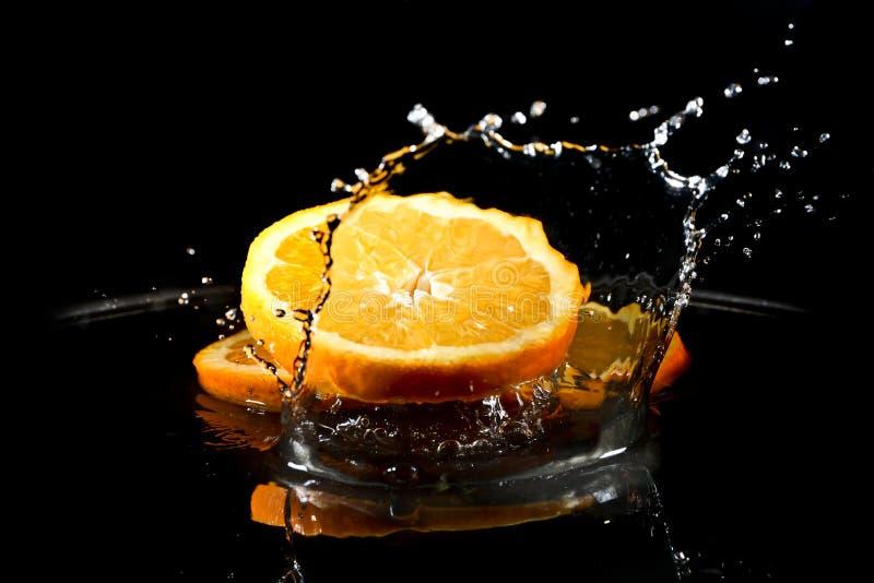 Citrusfrukter i vatten royaltyfria bilder