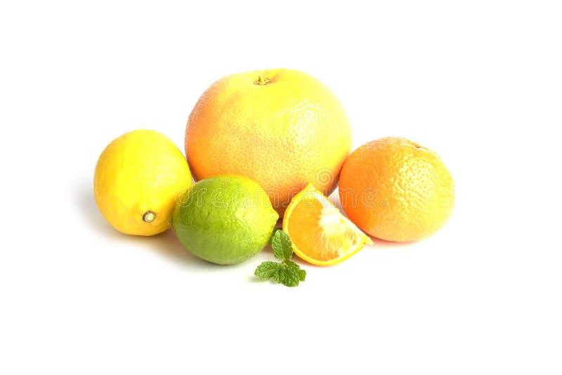 citrusfrukter isolerade white royaltyfri fotografi