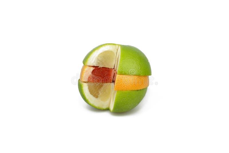 Citrusfrukter - materielbild fotografering för bildbyråer