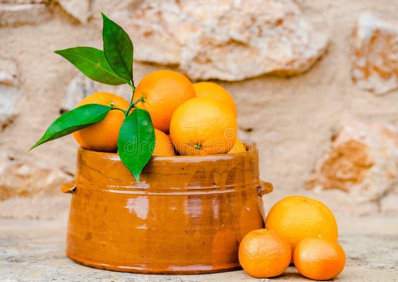 Citrusfrukter nya skördade saftiga söta apelsiner i en bunke arkivfoto