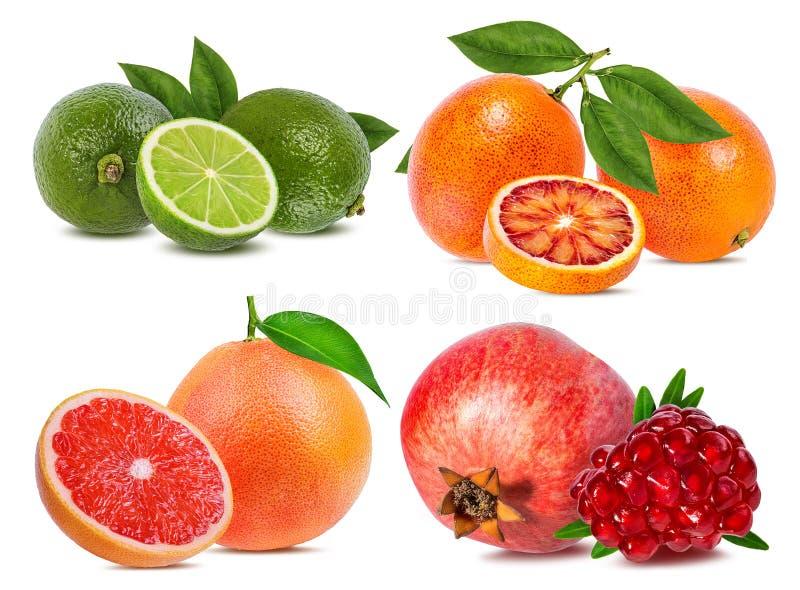 Citrusfruktuppsättningapelsin, grapefrukt, limefrukt, granatäpple som isoleras på vit arkivfoton