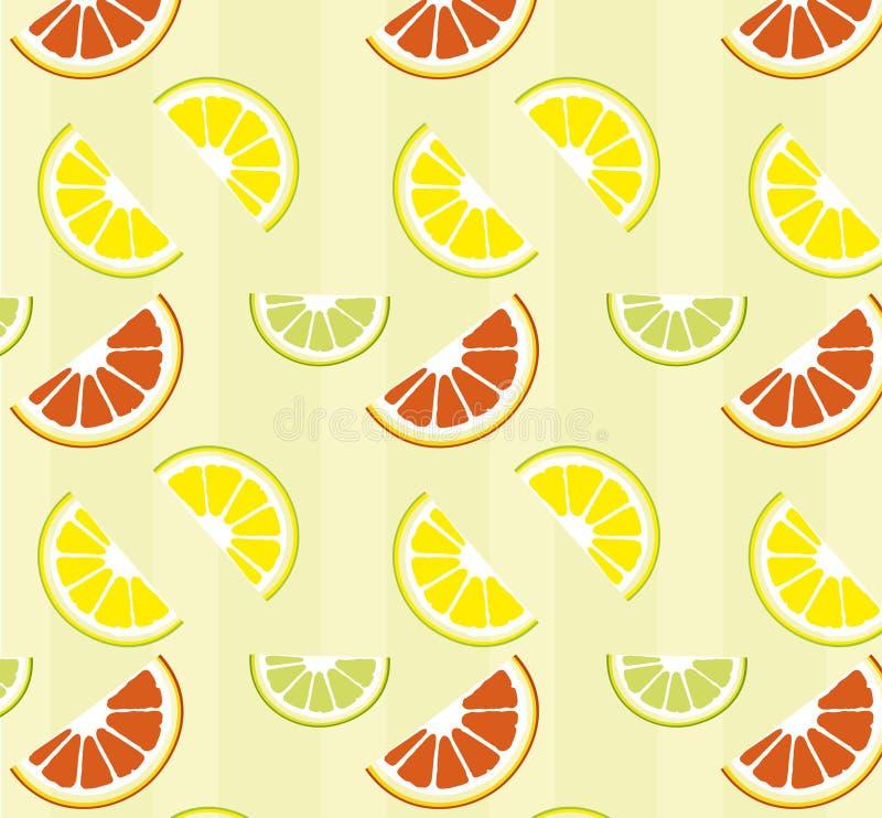 Download Citrusvrucht vector illustratie. Illustratie bestaande uit zoet - 10775273