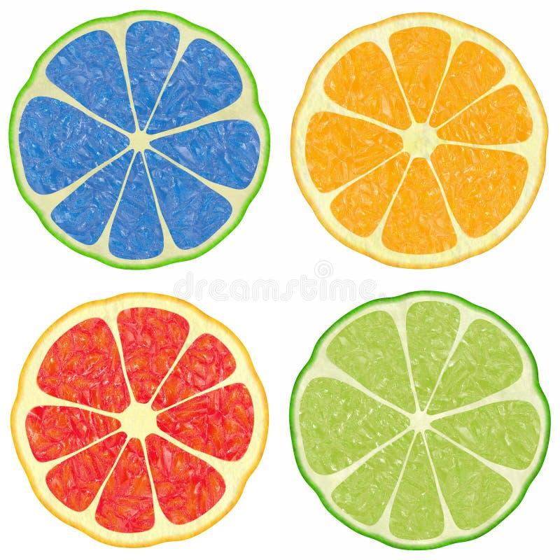 citrusvrucht stock illustratie