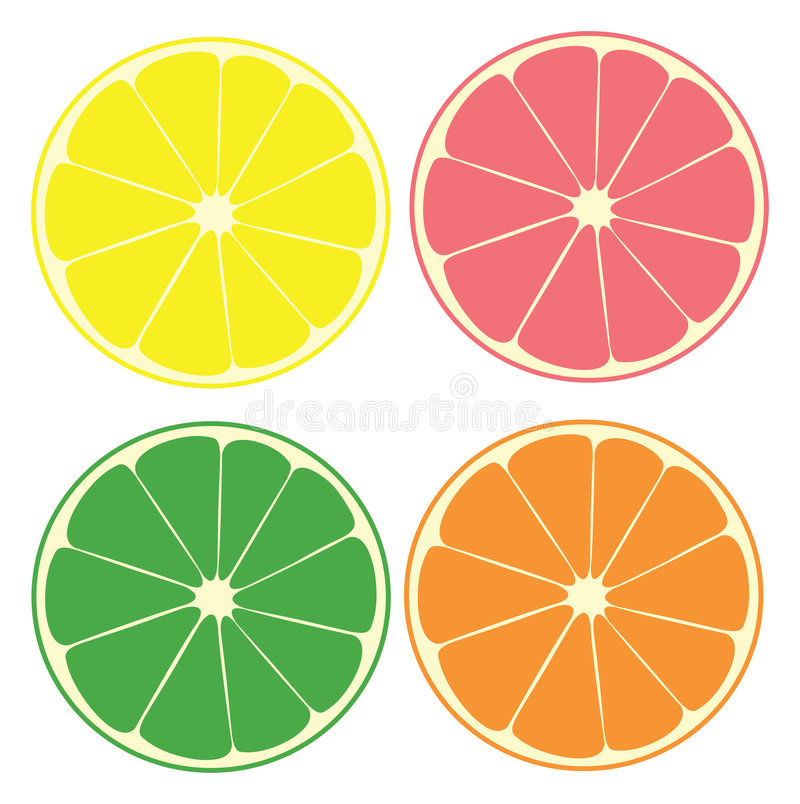 Citrusvrucht vector illustratie