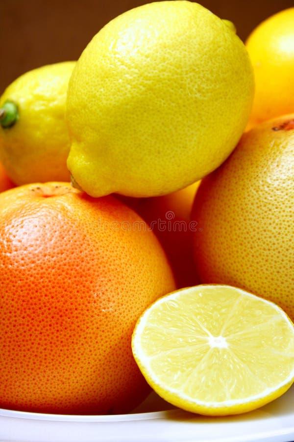 Citrusvrucht royalty-vrije stock afbeeldingen