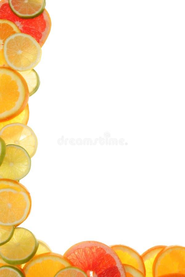 Citrusvrucht royalty-vrije stock afbeelding