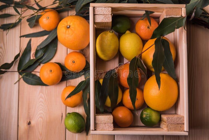 Citrusvrucht in doos stock afbeelding