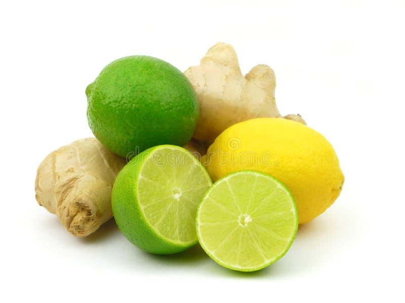Citrusvrucht en Gember royalty-vrije stock foto's