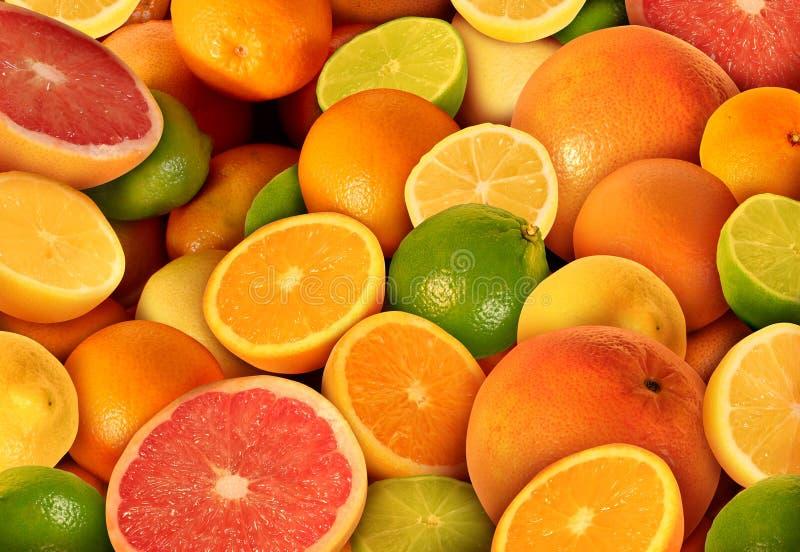 Citrusvruchten royalty-vrije stock foto's