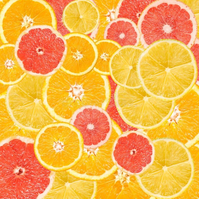 Citrusvruchten Achtergrondmengeling stock foto's