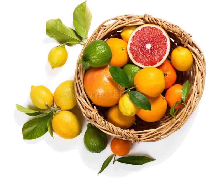 Citrusvruchten in een mand stock afbeeldingen