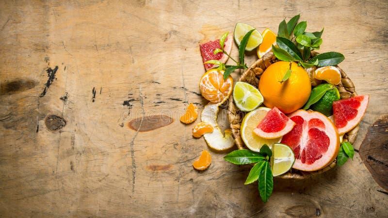 Citrusvruchten - grapefruit, sinaasappel, mandarijn, citroen, kalk in een mand met bladeren royalty-vrije stock afbeeldingen