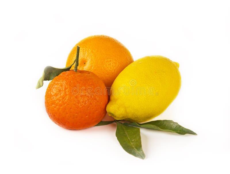 Citrusvruchten op wit: mandarin, citroen en sinaasappel royalty-vrije stock foto's