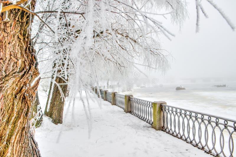 Città centrale Vyborg Russia della passeggiata immagine stock