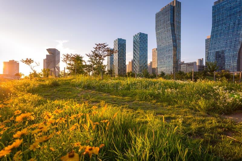 Città con il bello tramonto, Central Park di Seoul nel distretto aziendale internazionale di Songdo, Incheon Corea del Sud immagine stock libera da diritti