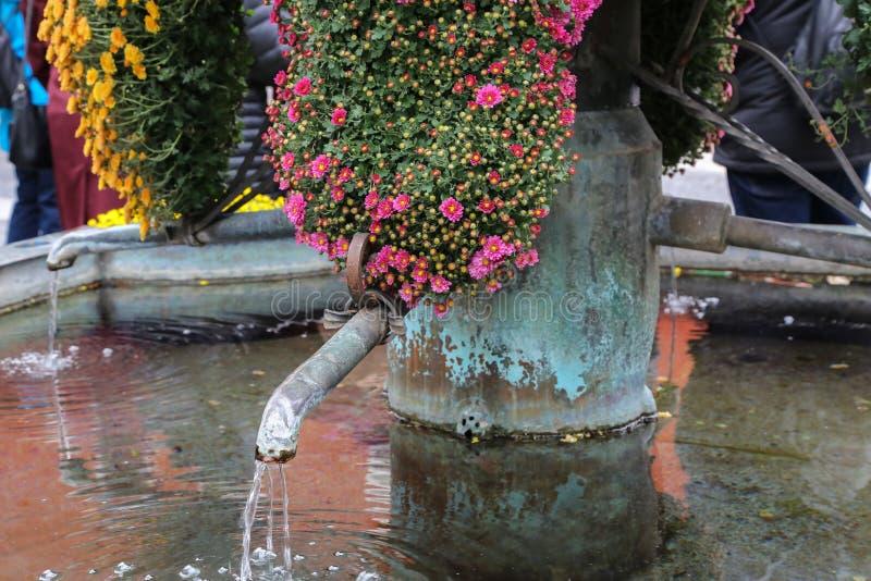 Città decorata bene con i bei fiori immagini stock libere da diritti