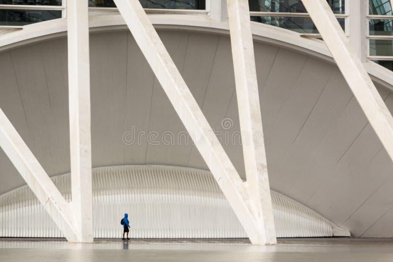 Città delle arti e delle scienze valencia La Spagna, Europa fotografia stock