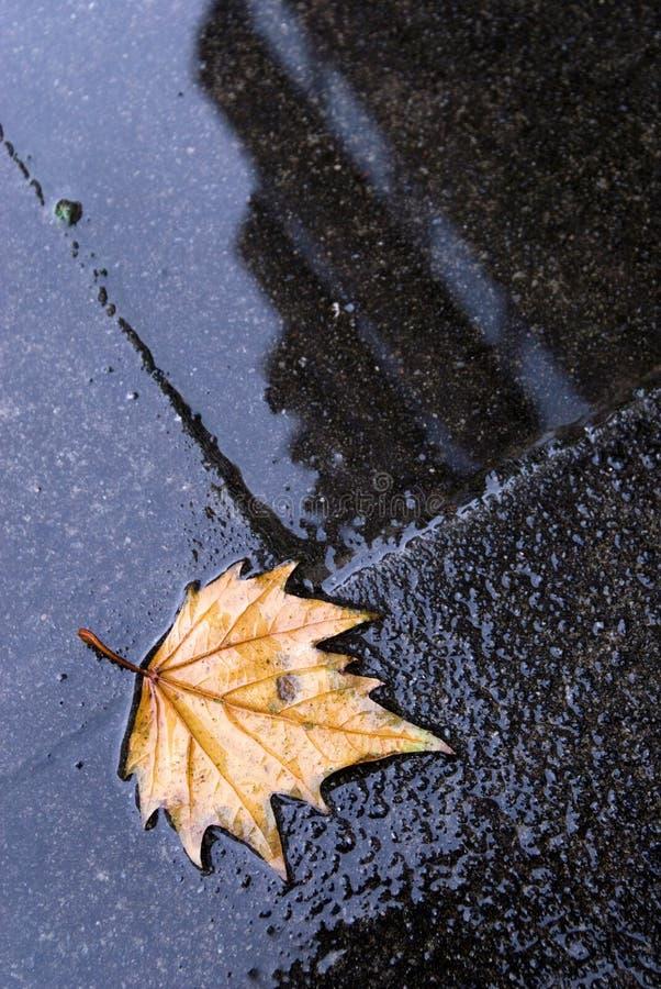 Città di autunno fotografia stock libera da diritti