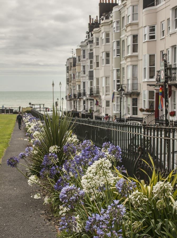 Città di Brighton - fiori e costruzioni immagine stock libera da diritti