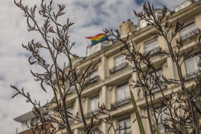 Città di Brighton - una costruzione e una bandiera dell'arcobaleno immagine stock libera da diritti
