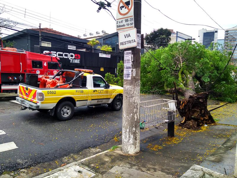 Città di Sao Paulo, stato di Sao Paulo/nuovo viale Independencia, 1066, Brasile Sudamerica 10/13/2018 di pioggia con forte vento  immagini stock