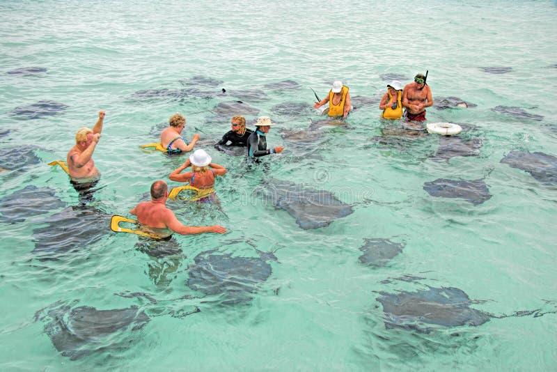 Città di stingray, Grand Cayman fotografie stock libere da diritti