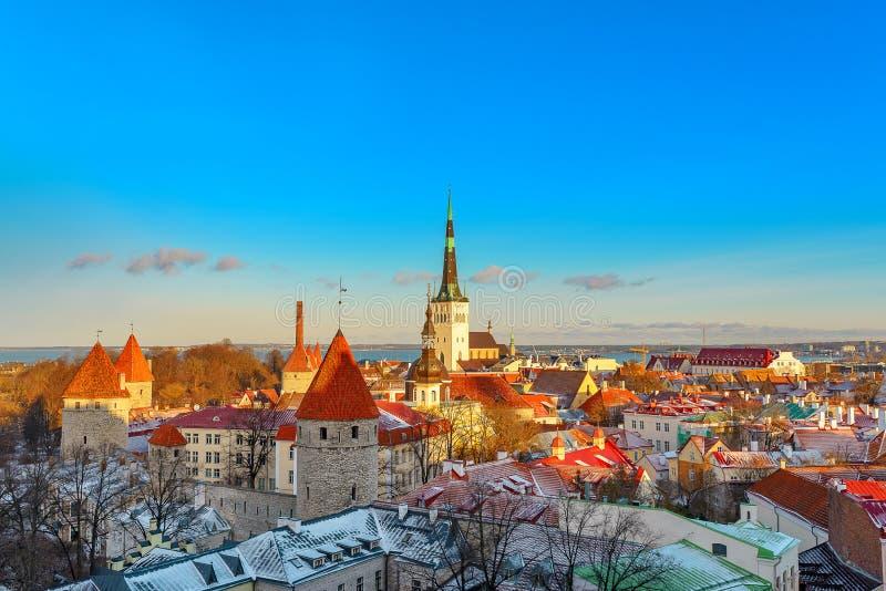 Città di Tallinn L'Estonia Neve sugli alberi nell'inverno immagine stock