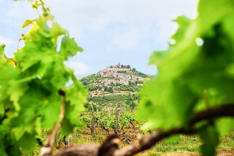 Città famosa di Motovun di vista scenica nella regione di Istria, vicino a Rovigno destinazione di lusso di viaggio in Croazia, E fotografie stock