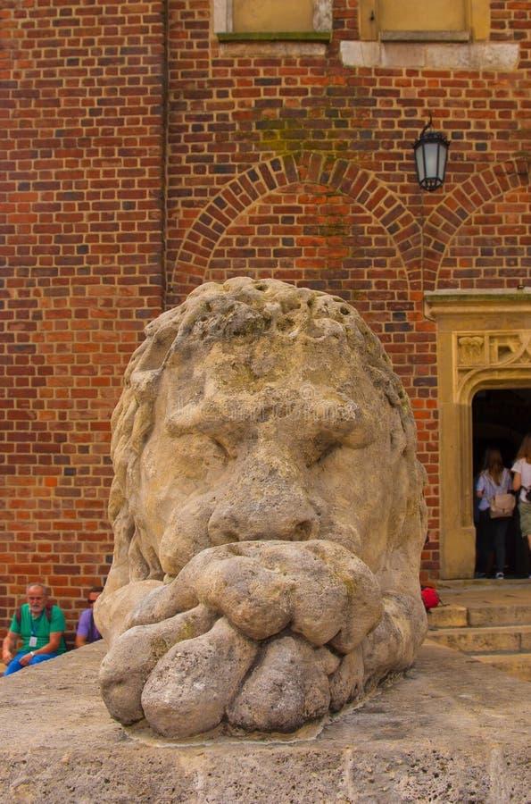 Città Hall Tower Lion immagini stock
