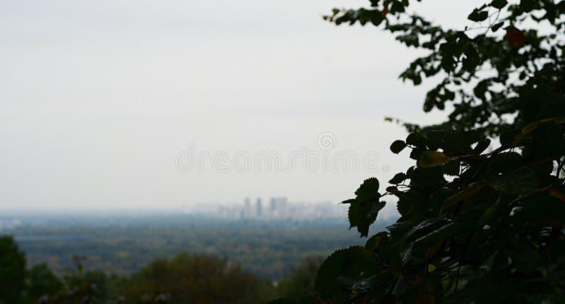 Città nella distanza fotografia stock libera da diritti