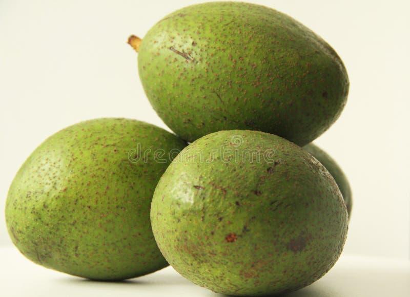 Città organica Bom Sucesso Minas Gerais Brazil dell'avocado di quattro frutta fotografia stock