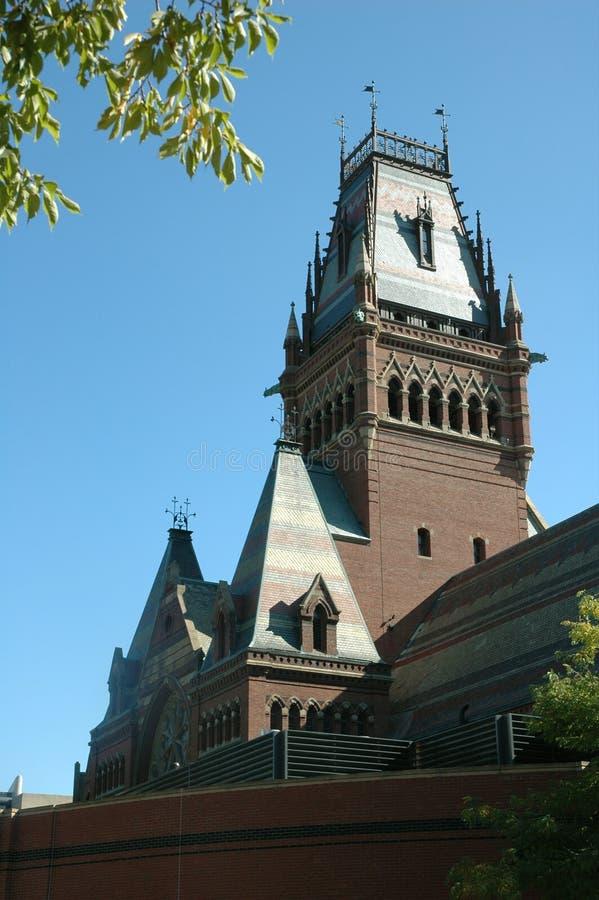 Città universitaria di Harvard fotografia stock libera da diritti