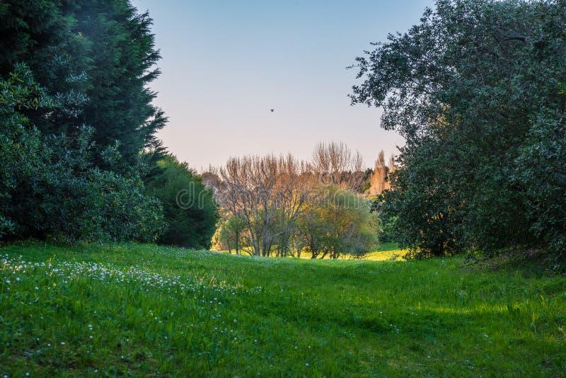 Citt? del parco naturale di Oporto a Oporto Portogallo immagini stock