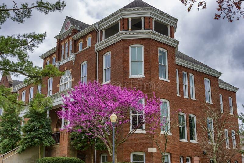 Citt? universitaria dell'istituto universitario di Maryville in Maryville Tennessee immagine stock