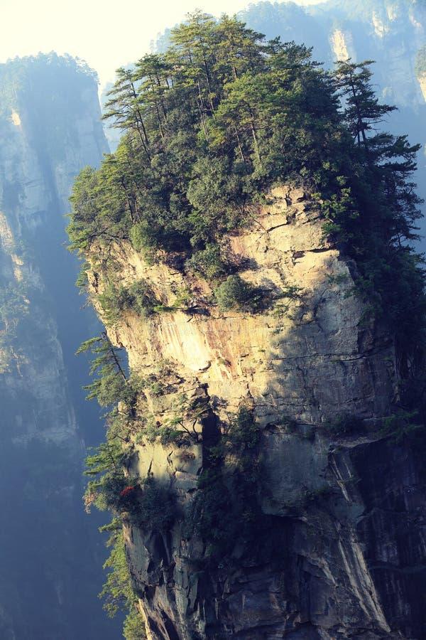 Cittadino Forest Park di Zhangjiajie fotografie stock