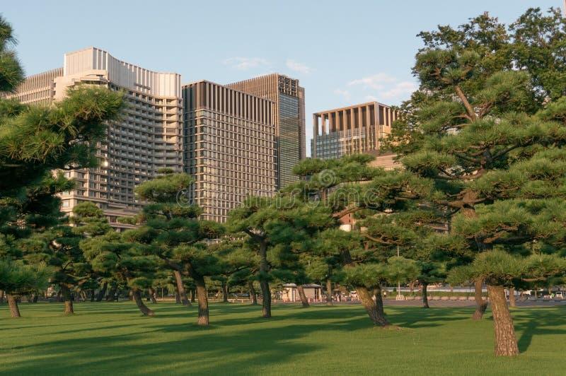 City block in Tokyo royalty free stock image