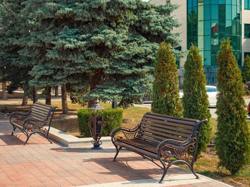 City boulevard bench coniferous trees royalty free stock images
