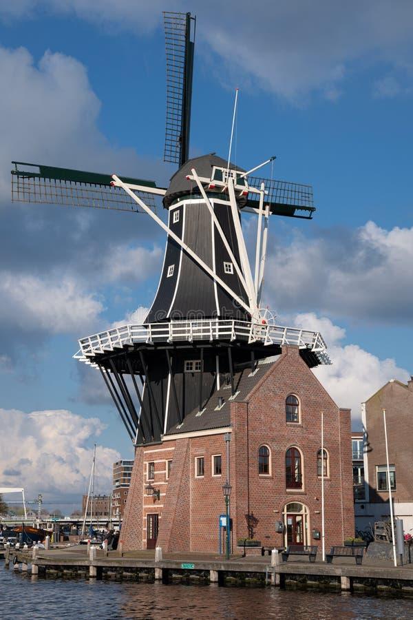 City center of Haarlem, Netherlands stock photos