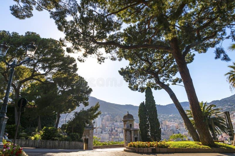 City garden on Avenue de la Porte Neuve in Monaco stock images