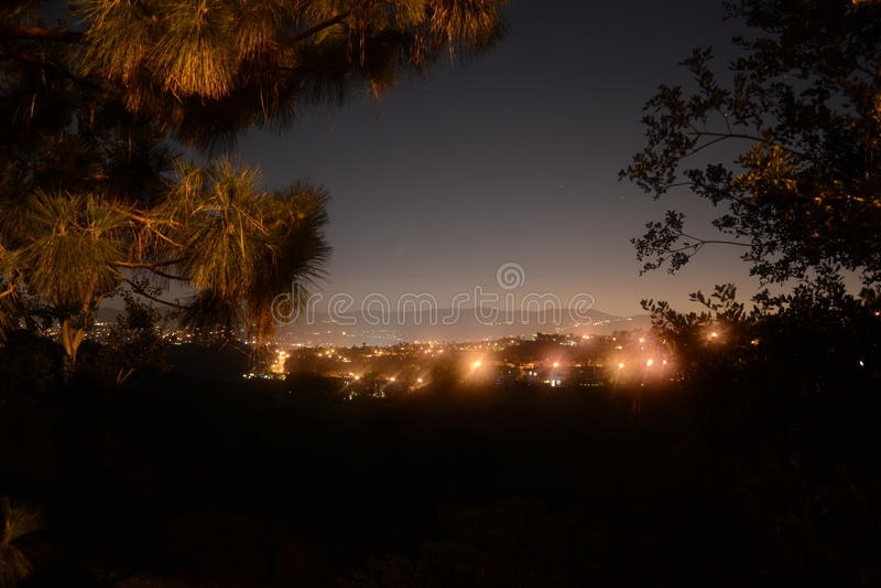 City lights at night stock photo