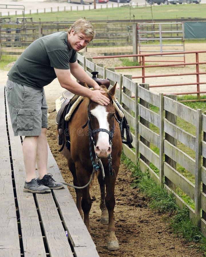 Download City Man Handling Horse stock image. Image of animal - 20565219