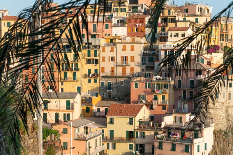 The city of manarola through palm leafs stock image