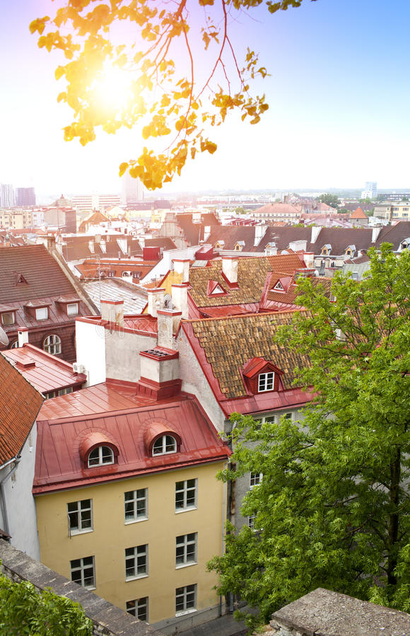 City panorama from an observation deck of Old city`s roofs. Tallinn. Estonia royalty free stock images