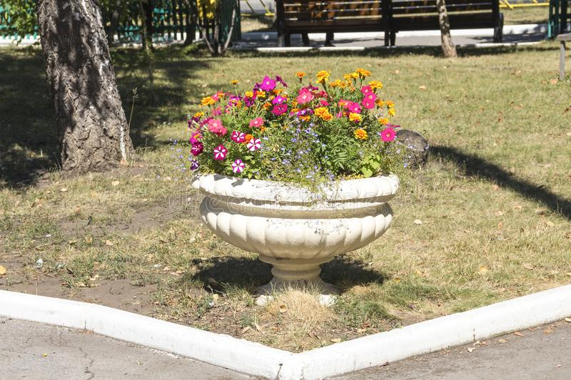 City Park, flowerpot with flowers on the lawn. Old concrete flowerpot with decorative flowers royalty free stock photography