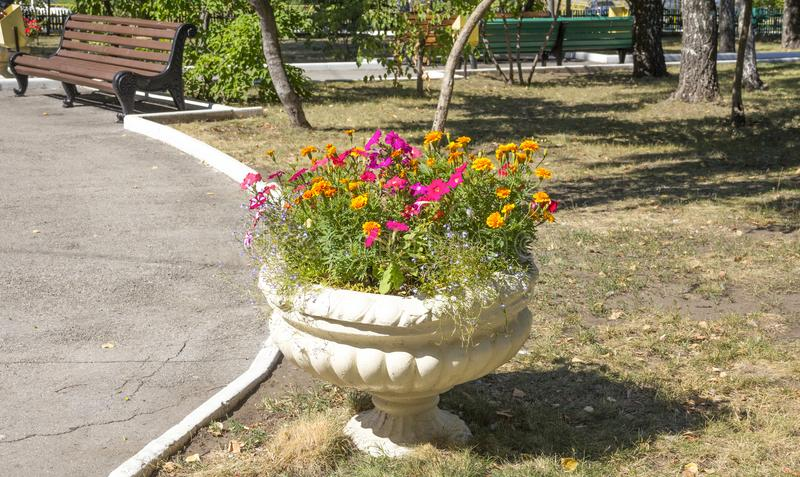 City Park, flowerpot with flowers on the lawn. Old concrete flowerpot with decorative flowers stock images