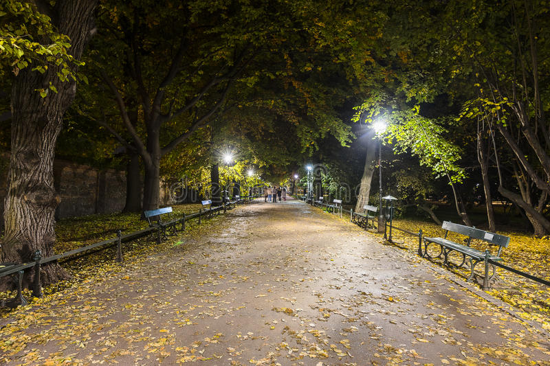 City Park by night royalty free stock photos